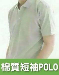 棉質短袖 POLO衫